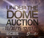 underthedomeauction