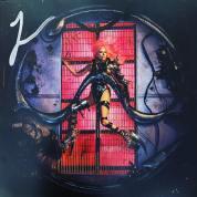 Lady GAGA autographed cd album cover